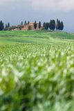 Tuscany landscape - belvedere Royalty Free Stock Images