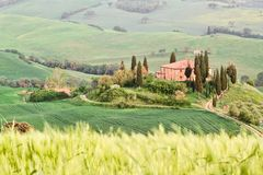 Tuscany landscape - belvedere Royalty Free Stock Photo