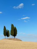 Tuscany landscape with cypress trees Stock Photos