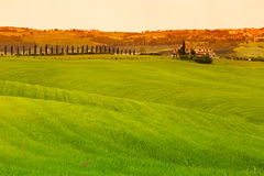 Tuscany landscape with fields and farmhouse, Pienza, Italy Royalty Free Stock Photo