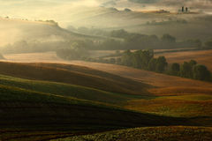 Tuscany landscape with fog. Sunrise morning in Tuscany landscape. Idyllic view of hilly farmland in Tuscany in beautiful morning l Royalty Free Stock Image