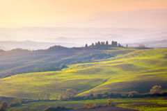 Tuscany landscape at gentle sunrise light, Stock Photography