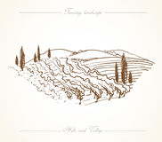 Tuscany Landscape hand drawn illustration Stock Images