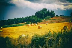 Tuscany landscape with hay bales, hills and meadow, Tuscany, Italy. Vintage toned image, film grain effect royalty free stock photography