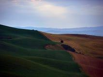 Tuscany landscape. Haziness tuscany landscape at sunrise Royalty Free Stock Images