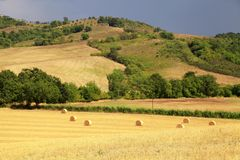 Tuscany landscape with hills, yellow fields and hay bales, Tuscany, Italy. stock photos