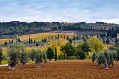 Tuscany landscape - Italy Royalty Free Stock Image