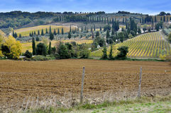 Tuscany landscape - Italy Royalty Free Stock Photo
