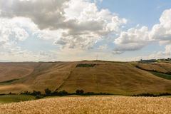 Tuscany landscape with a light pole at the horizon. With wheat and hills stock photos