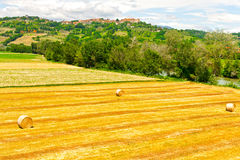 Tuscany Landscape Royalty Free Stock Images