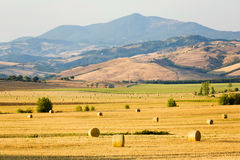 Tuscany landscape, meadow with bales Stock Image