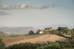 Tuscany Landscape in the morning Stock Image