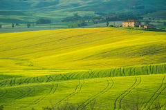 Tuscany landscape near Pienza, Val d'Orcia Italy Stock Photo