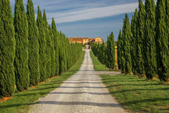Tuscany - Landscape panorama, hills and meadow, Toscana - Italy Stock Images