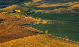 Tuscany - Landscape panorama, hills and meadow, Toscana - Italy Stock Image