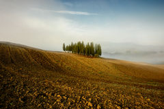 Tuscany - Landscape panorama, hills and meadow, Toscana - Italy Stock Photos
