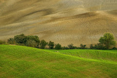Tuscany - Landscape panorama, hills and meadow, Toscana - Italy Stock Photography