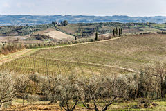 Tuscany, landscape Stock Photos