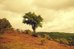 Tuscany landscape in rainy weathe Royalty Free Stock Photography