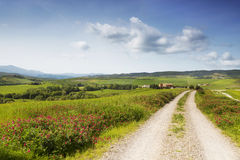 The Tuscany landscape with a road. Italy Royalty Free Stock Photos