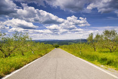 The Tuscany landscape with a road. Italy Royalty Free Stock Image