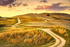 Tuscany landscape, rural road and green field. Volterra Italy. Tuscany landscape, rural road and green field on sunset. Volterra Italy Europe Stock Photography