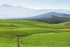 Tuscany, landscape. Siena, Italy, Europe Royalty Free Stock Images