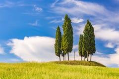 Tuscany landscape at spring Royalty Free Stock Photo