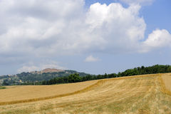 Tuscany, landscape at summer Royalty Free Stock Photos
