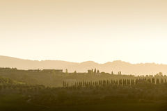 Tuscany Landscape at sunset Stock Image
