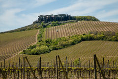 Tuscany Landscape. Tuscany Typical Chianti Countryside Italy Stock Photography