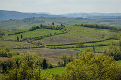 Tuscany Landscape. Typical Tuscany Landscape at Spring Italy Royalty Free Stock Images