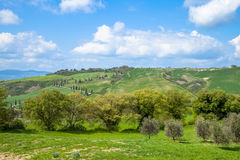 Tuscany Landscape. Typical Tuscany Landscape  at spring Italy Royalty Free Stock Image