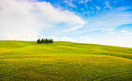 Tuscany landscape in Val d'Orcia, Italy Stock Images