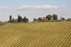 Tuscany landscapes Stock Image