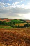 Tuscany landskap arkivfoton