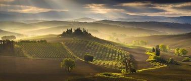 Tuscany landskap, höstfält, Italien, Val, D, Orcia royaltyfri bild