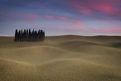 Tuscany landskap med cypressen Arkivfoton