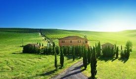 Tuscany landskap med det typiska lantgårdhuset Royaltyfria Bilder