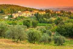 Tuscany landskap med staden och den olivgröna kolonin på kullen fotografering för bildbyråer