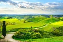 Tuscany lantligt solnedgånglandskap Royaltyfria Bilder