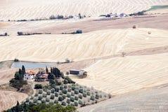Tuscany liggande Royaltyfri Fotografi