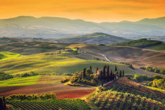 Tuscany liggande på soluppgången Tuscan lantgårdhus, vingård, kullar Arkivfoton