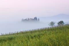 Tuscany liggande p? soluppg?ngen Typisk f?r det tuscan lantbrukarhemmet f?r region, kullar, ving?rd Italien nytt gr?nt tuscany la royaltyfri fotografi