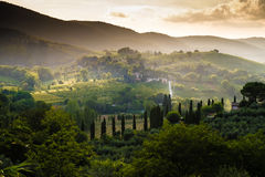 Tuscany Light an Mist royalty free stock photography