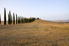 Tuscany mansion Stock Images