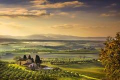 Tuscany Maremma mgłowy ranek, ziemia uprawna i zieleni pola, Włochy fotografia royalty free