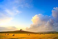 Tuscany, Maremma sunset landscape and thunderstorm cloud. Rural. Tuscany, Maremma typical countryside sunset landscape and thunderstorm cloud. Hill, trees, straw Royalty Free Stock Images