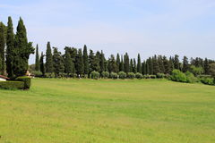 Tuscany meadows Stock Photo