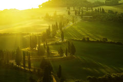 Tuscany morning Royalty Free Stock Photos